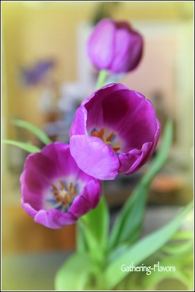 Resized Tulips Watermarked Three Yellow-001