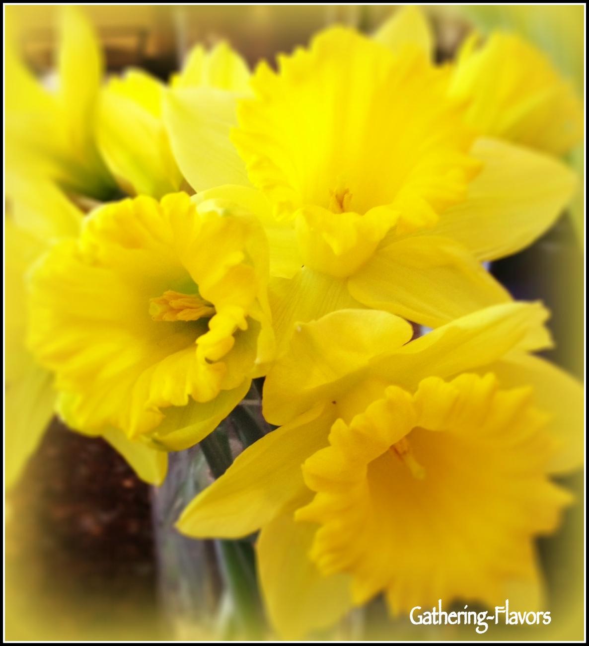 Wattermarked Daffodils Upclose