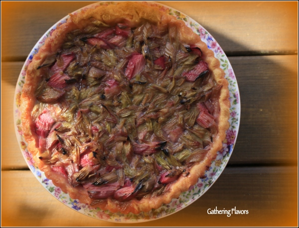 Rhubarb Tart in Sunlight by Dena T Bray