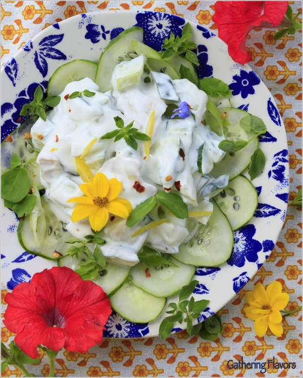 Summer Cucumber and Yogurt Relish by Dena T Bray