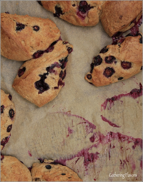Blueberry Scones in Process by Dena T Bray