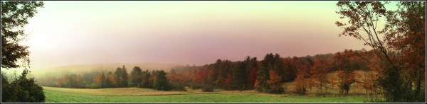 Autumn Field Panorama by Dena T Bray