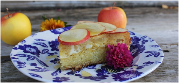 Apple Cake on Plate with Apples and Wood by Dena T Bray