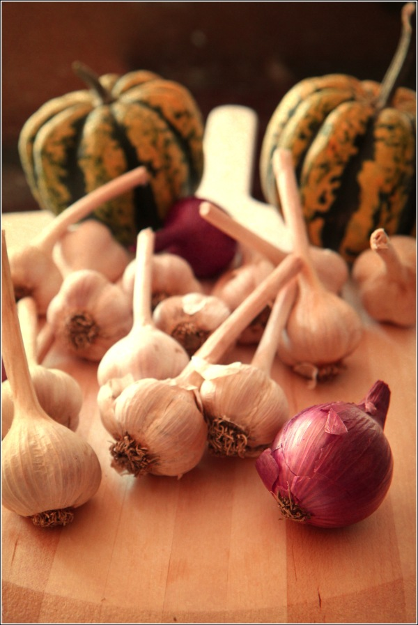 Vintage Fresh Garlic and Vegetables by Dena T Bray