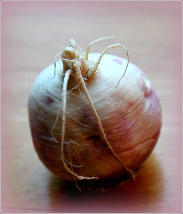 Turnip Alone by Dena T Bray Ⓒ