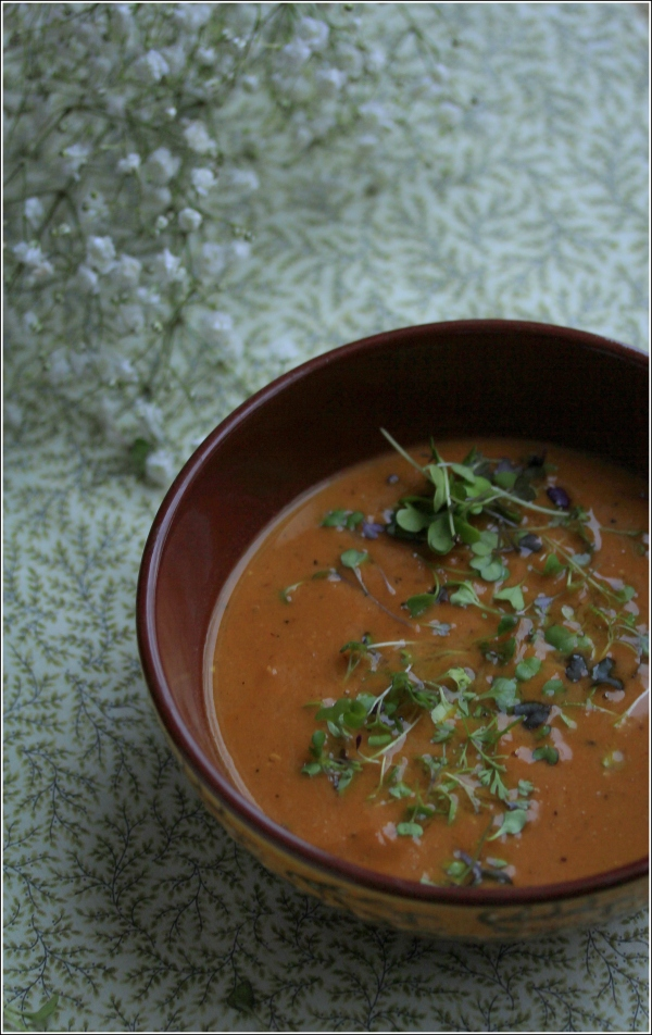 Sweet Potato Soup In Bowl by Dena T Bray ⓒ