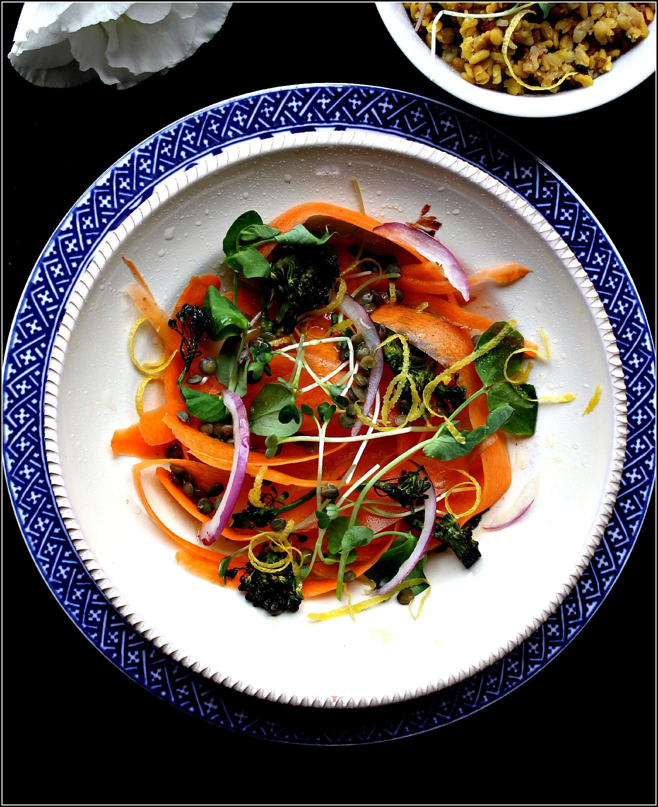 Carrot Salad on White Plate and Blue Border by Dena T Bray©