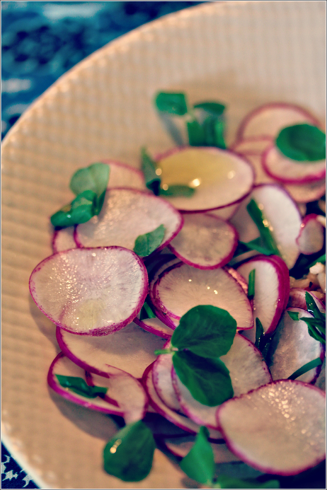 Radish Salad Upclose by Dena T Bray©.jpg