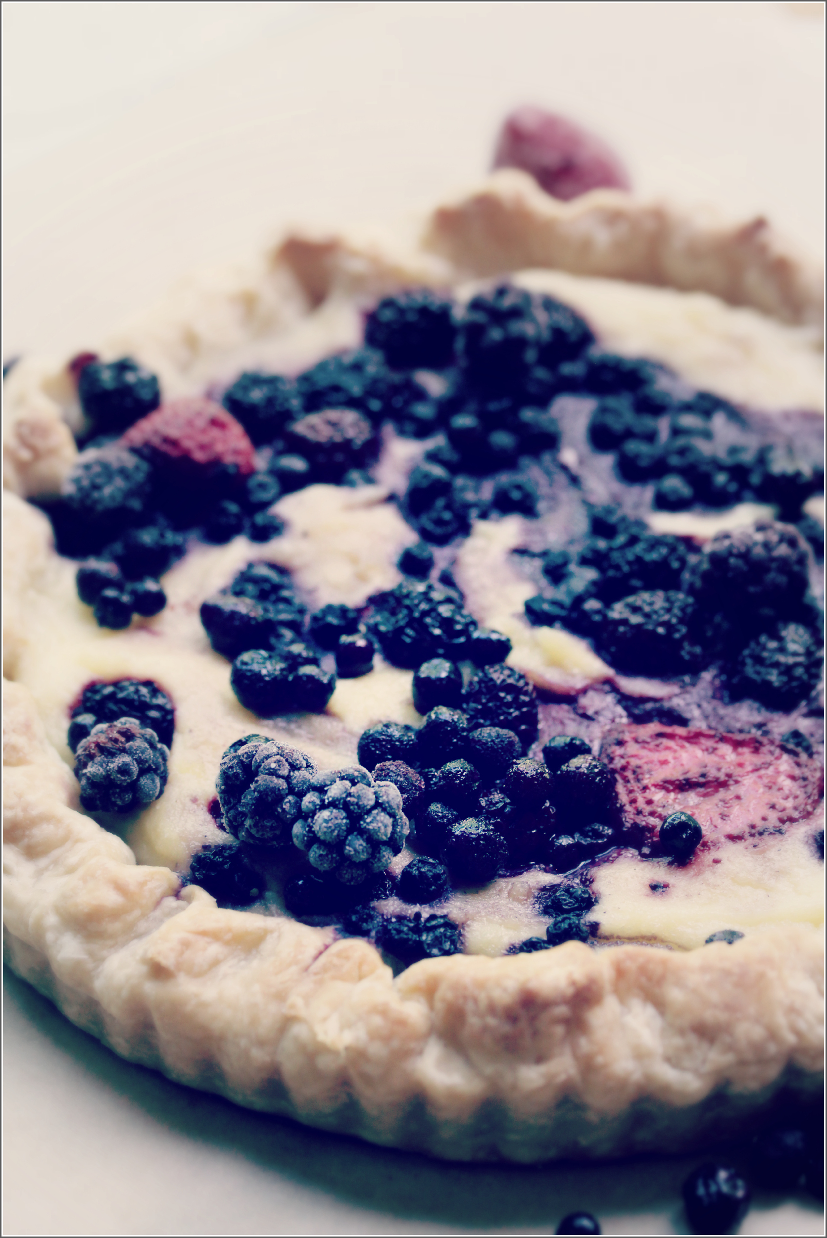 Simple Mixed Berry and Semolina Tart by Dena T Bray©