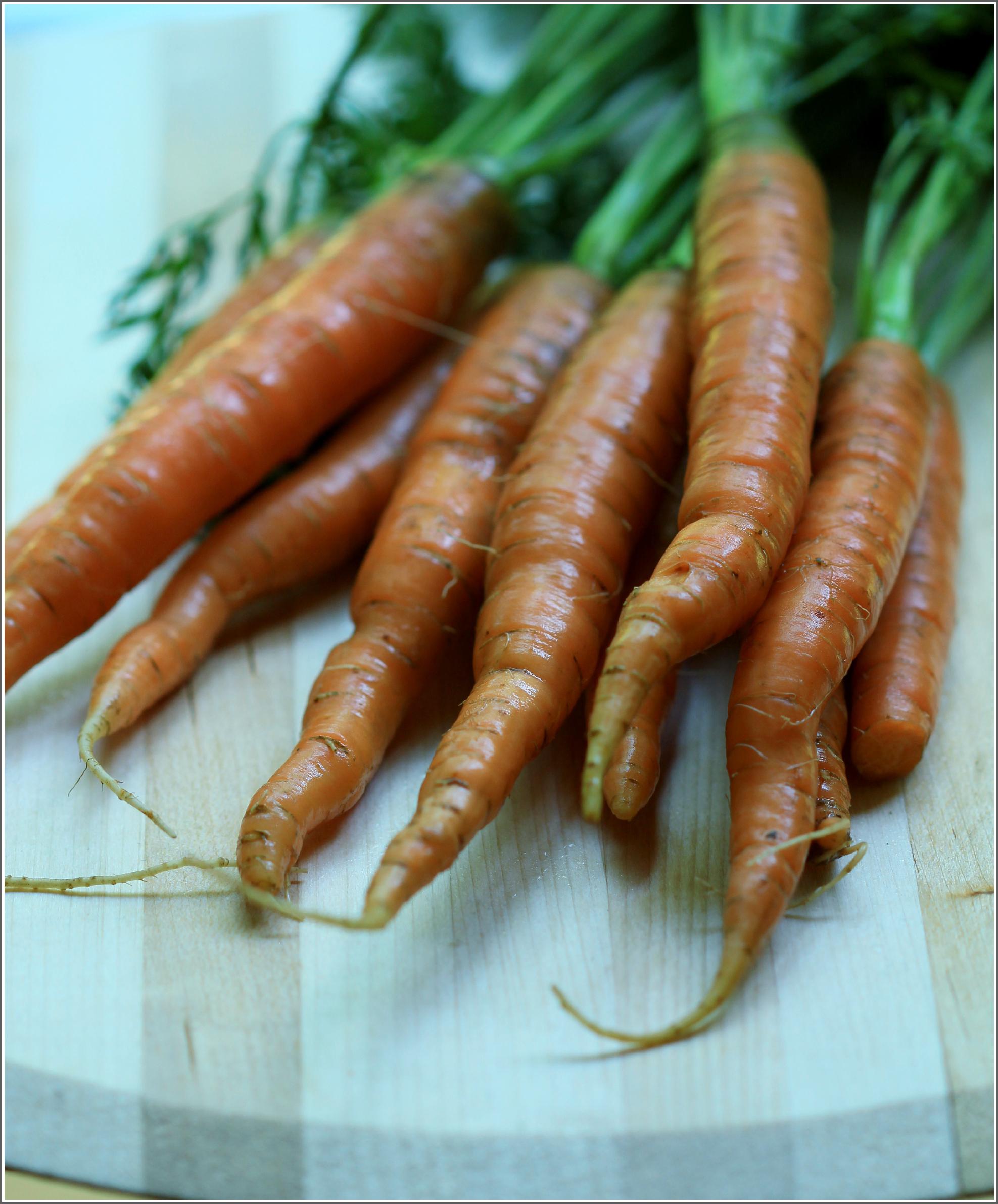 Carrots Upclose by Dena T Bray©