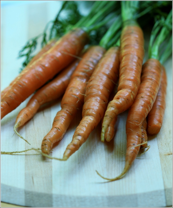 Carrots Upclose by Dena T Bray©