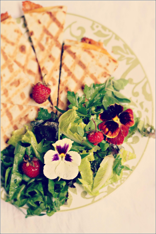 Quesadillas & Salad Overhead Dena T Bray©