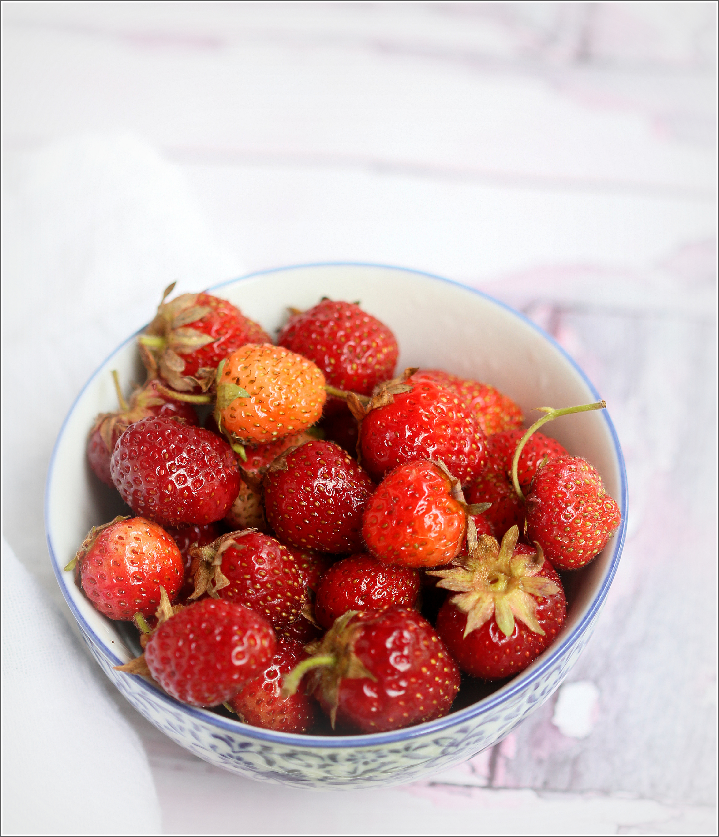 Strawberries in Bowl Dena T Bray©