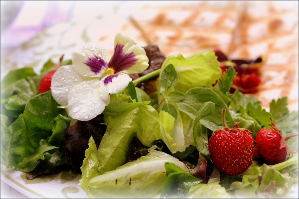 Salad Greens and Strawberries by Dena T Bray