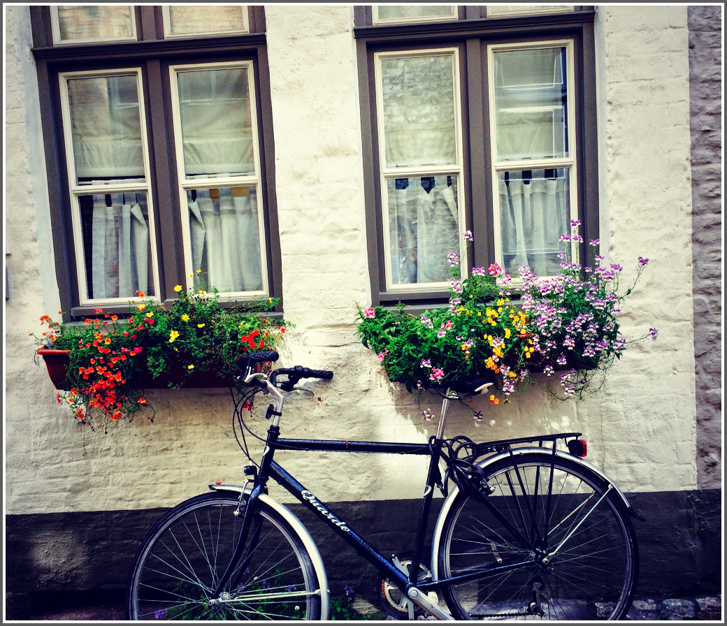 Bruges Windows with Bicycle by Dena T Bray©