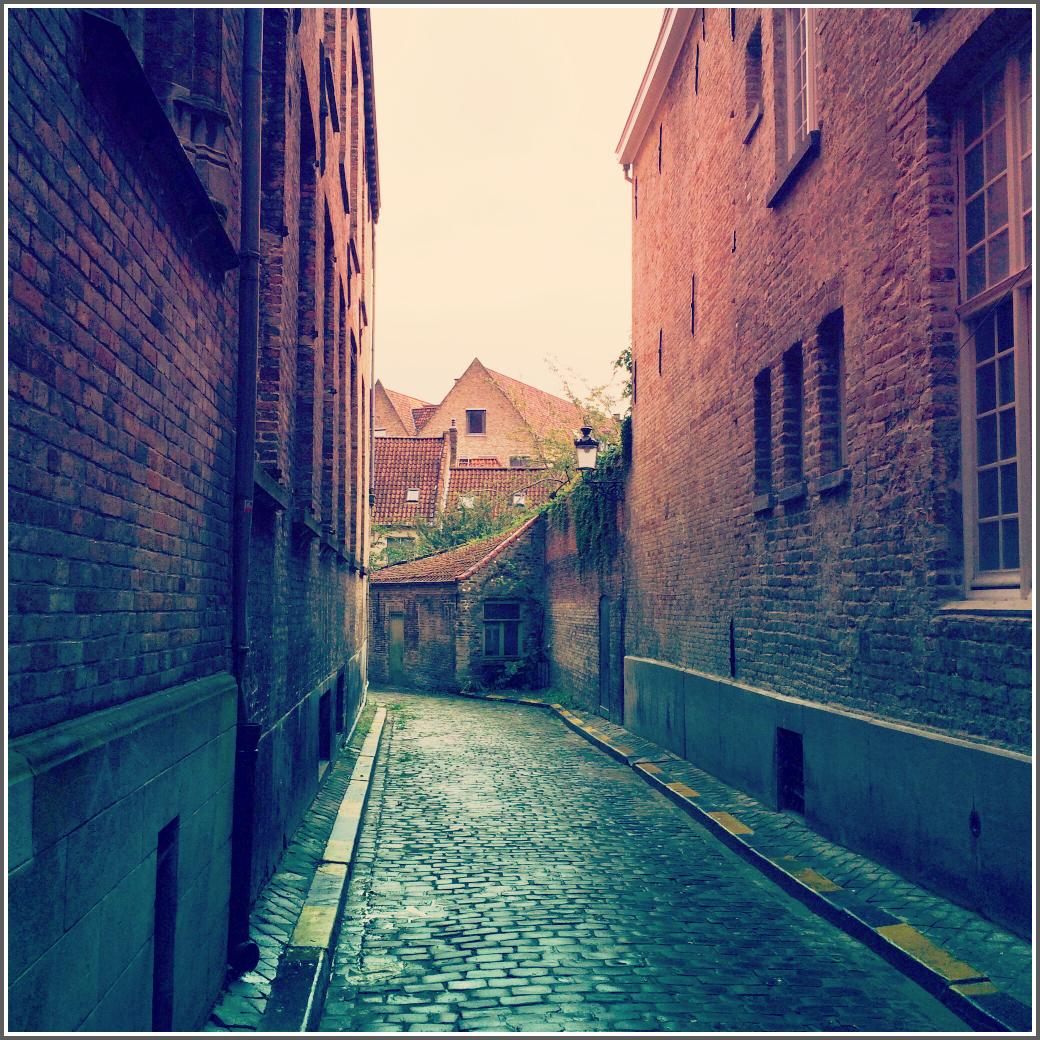 Cobblestone Street by Dena T BrayⒸ
