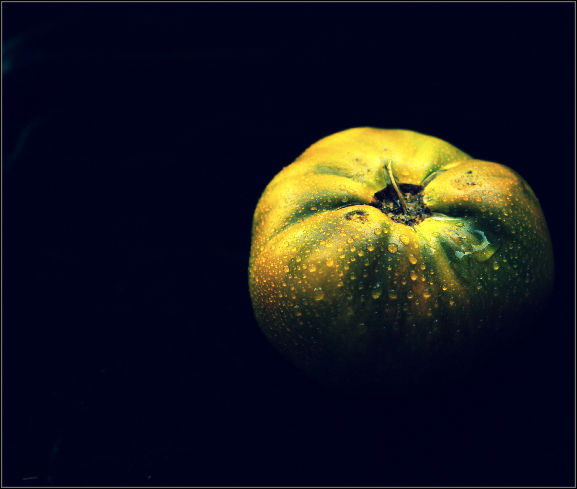 Green Tomato in Darkness by Dena T Bray©