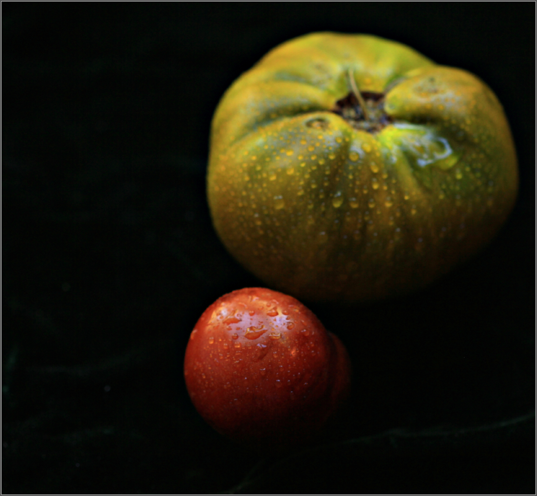 Two Tomatoes Still Lifeby Dena T Bray©