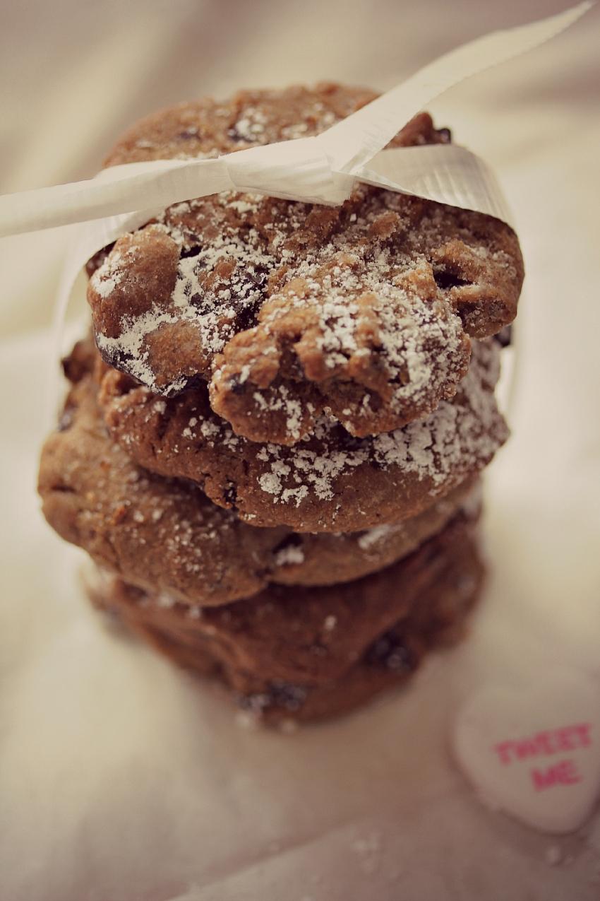 Chocolate Sunflower Butter Cookies